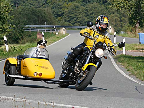 Motorcycle Sidecar For Dogs For Sale